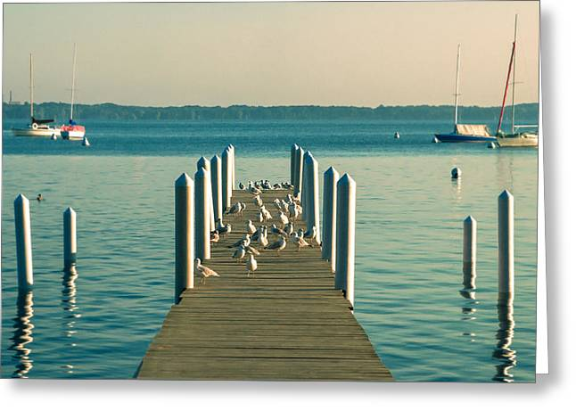 Lazy Afternoon Pier Greeting Card by Todd Klassy