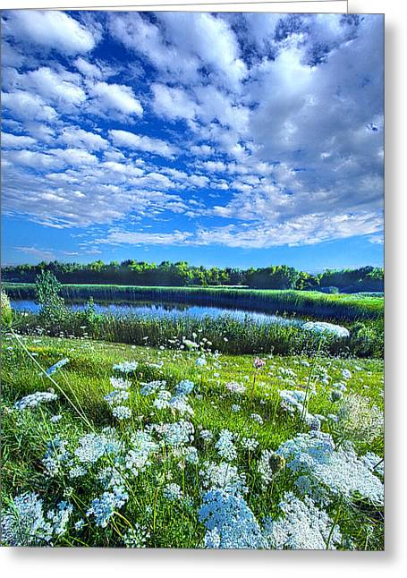 Nature Greeting Cards - Lazy Days Greeting Card by Phil Koch