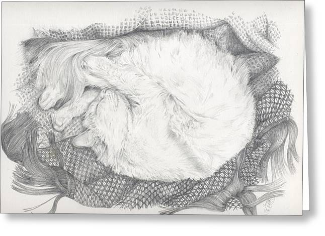 Lazy Sunday Afternoon Greeting Card