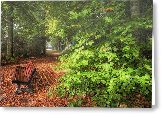 The Abbey's Bench Greeting Card