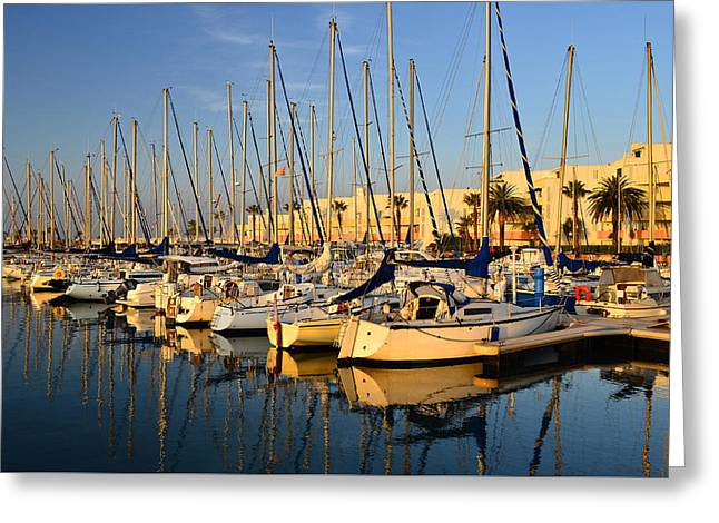 Sunny Harbour Greeting Card