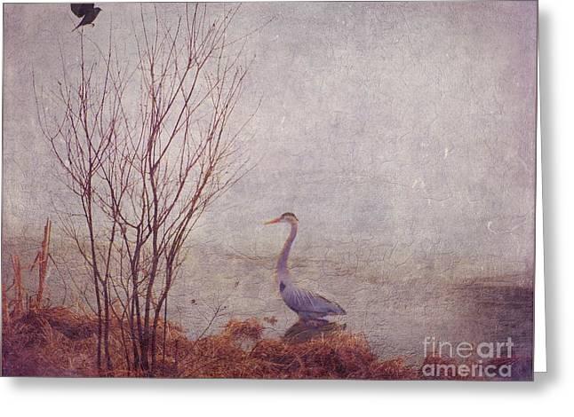 Le Retour De Mon Heron Greeting Card by Aimelle