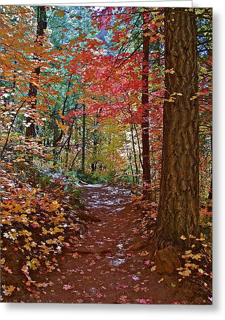 Best Sellers -  - West Fork Greeting Cards - Lead the Way  Greeting Card by Katherine Halstead