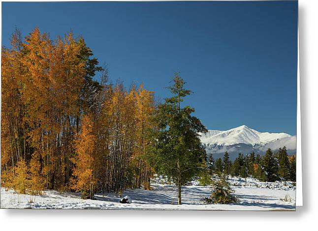 Leadville Autumn Views Greeting Card