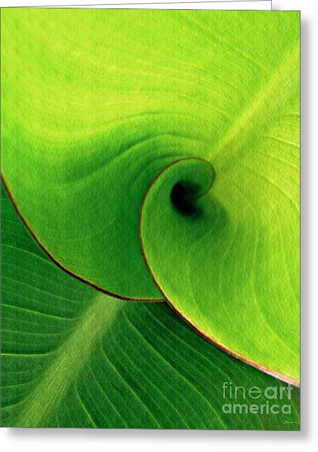 Leaf Abstract 16  Greeting Card by Sarah Loft