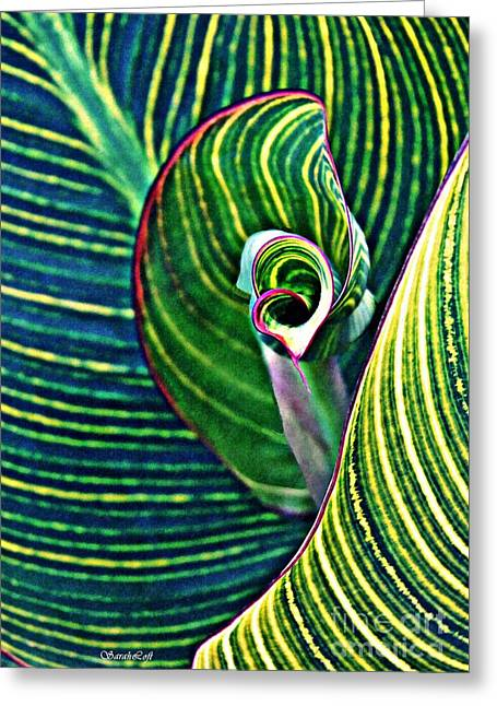 Leaf Abstract 5 Greeting Card by Sarah Loft