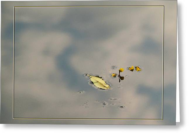 Leaf And  Reflection Greeting Card by Robert Clayton