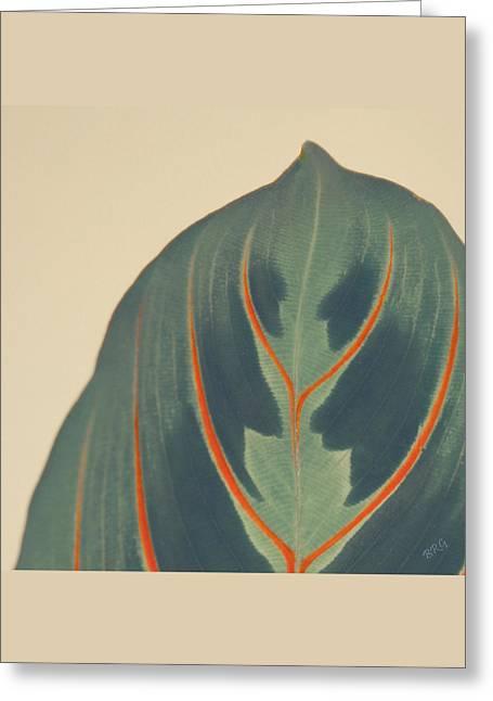 Leaf Greeting Card by Ben and Raisa Gertsberg