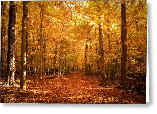 Leaf Covered Pathway In A Golden Forest Greeting Card by Chantal PhotoPix