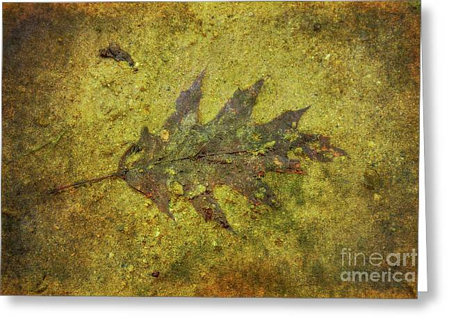 Greeting Card featuring the digital art Leaf In Mud Two by Randy Steele