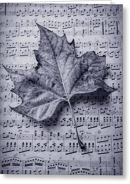 Leaf On Sheet Music In Black And White Greeting Card