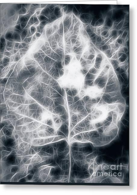 Leaf On Snow Greeting Card by Mellissa Ray
