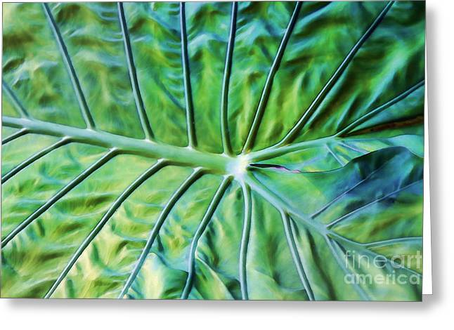 Leaf Pattern Greeting Card by Teresa Zieba