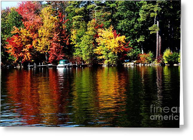 Leaf Peeping Greeting Card