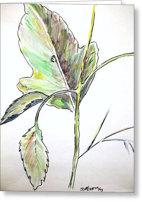 Leaf  Greeting Card by Scott Easom