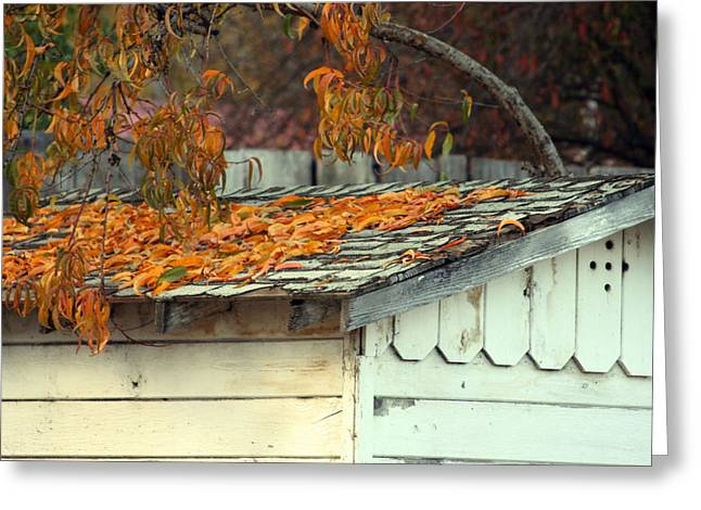 Leaf Shed Greeting Card by Holly Ethan