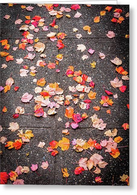 Leafy Autumn Walk Greeting Card