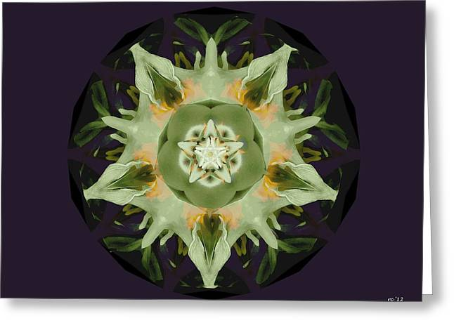 Leafy Mandala Greeting Card by Rene Crystal
