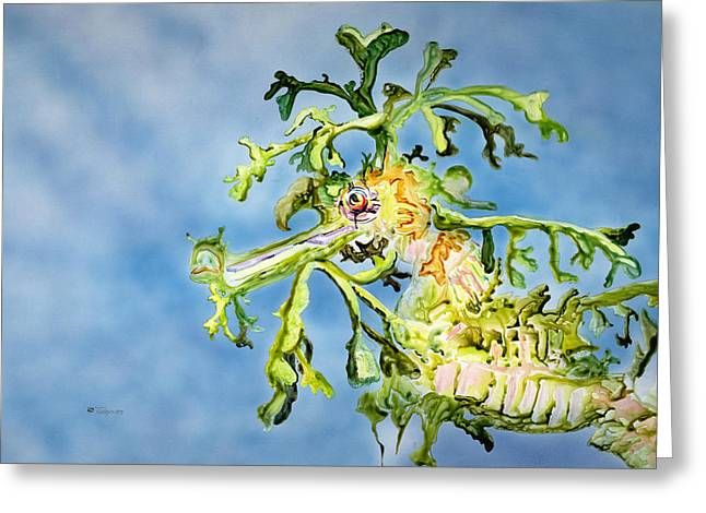 Leafy Sea Dragon Greeting Cards - Leafy Sea Dragon Greeting Card by Tanya L Haynes - Printscapes