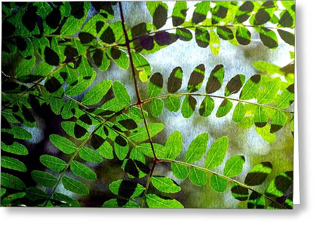 Leafy Textures Greeting Card