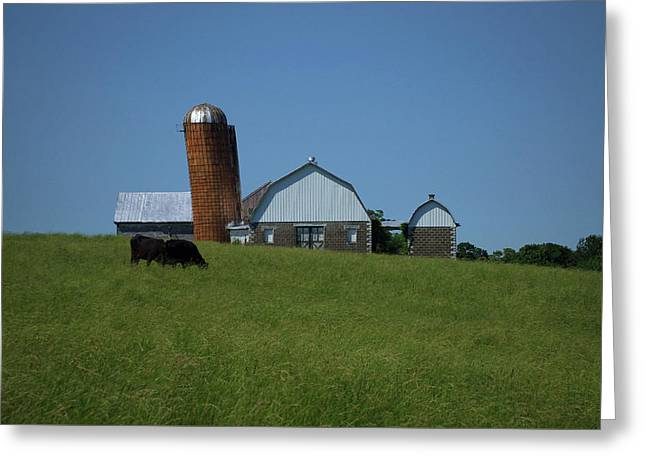 Greeting Card featuring the photograph Lean Beef by Robert Geary