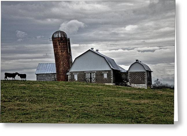 Greeting Card featuring the photograph Lean On Me by Robert Geary