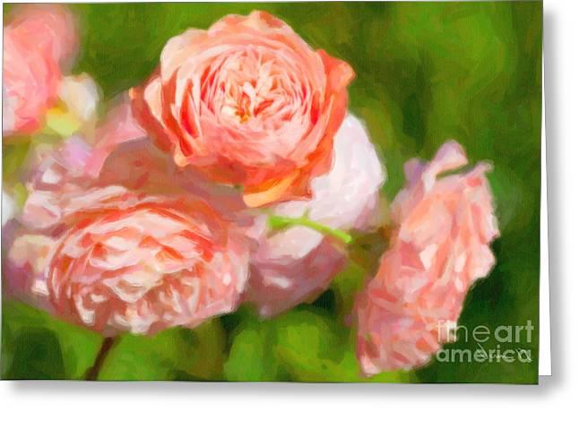 Leander English Rose Greeting Card by Verena Matthew