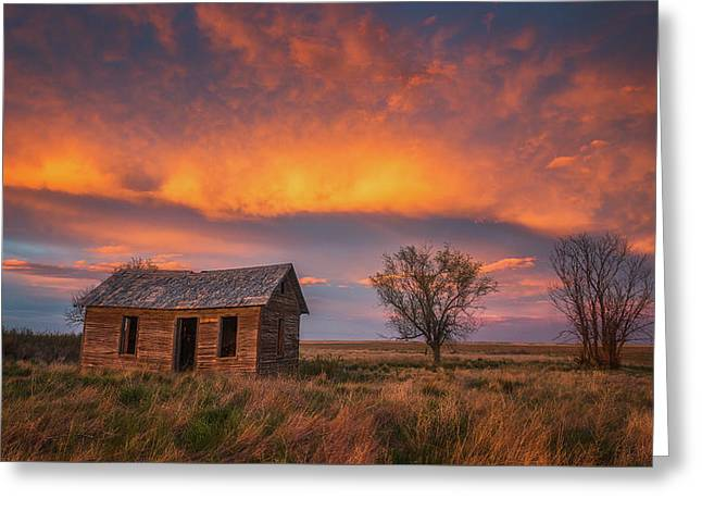 Leaning Cabin Of Briggsdale Greeting Card