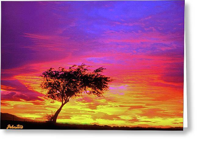 Leaning Tree At Sunset Greeting Card