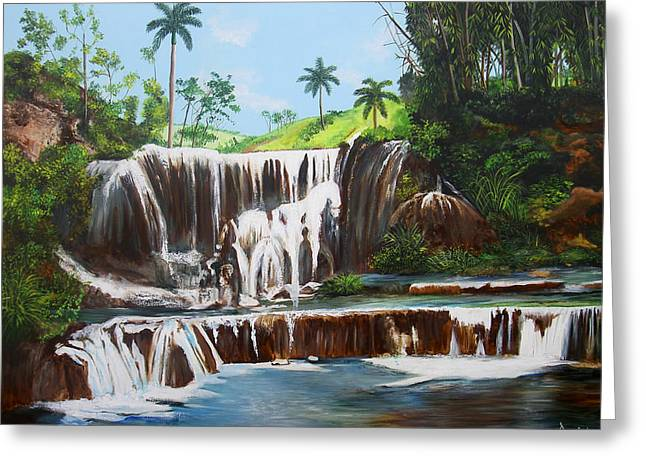 Leaping Waterfall Greeting Card