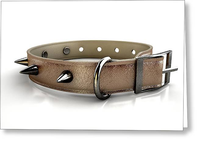 Leather Studded Collar Greeting Card by Allan Swart