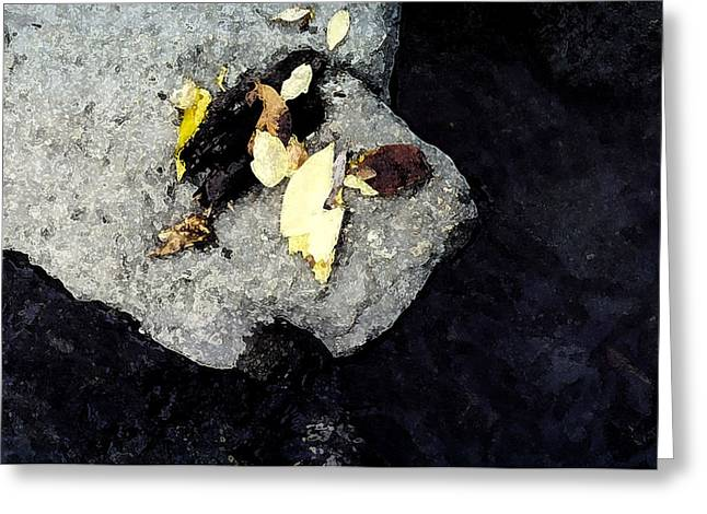 Greeting Card featuring the photograph Leaves On The Rocks by Lyle Crump