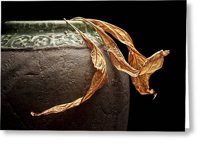 Leaves Greeting Card by Tom Mc Nemar