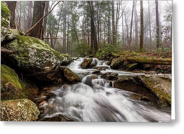 Leconte Creek Greeting Card by Everet Regal