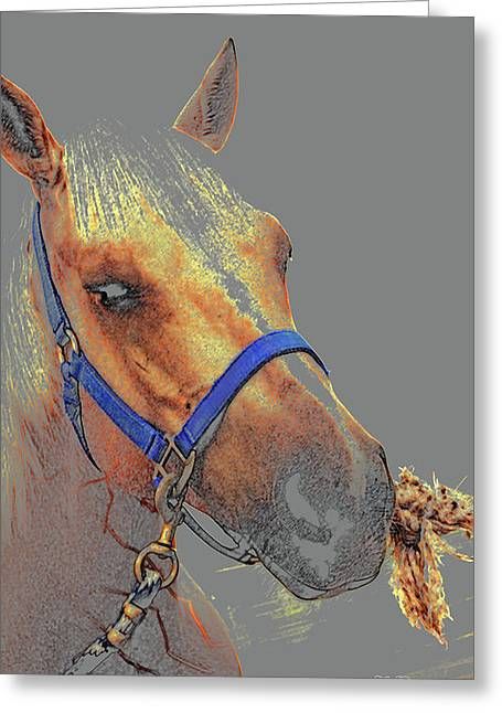Legend Of A Horse Greeting Card
