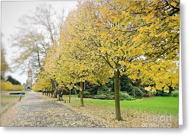 Greeting Card featuring the photograph Leipzig Memorial Park In Autumn by Ivy Ho