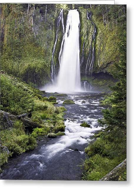 Lemolo Falls Greeting Card
