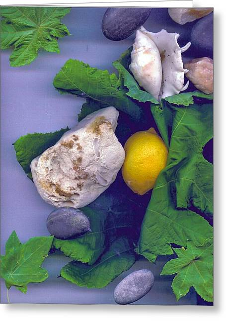 Sour Mixed Media Greeting Cards - Lemon Stone And Shells With Leaves  Greeting Card by Leonor Shuber
