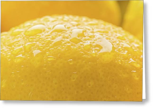 Lemon Zest Number 2 Greeting Card by Steve Gadomski