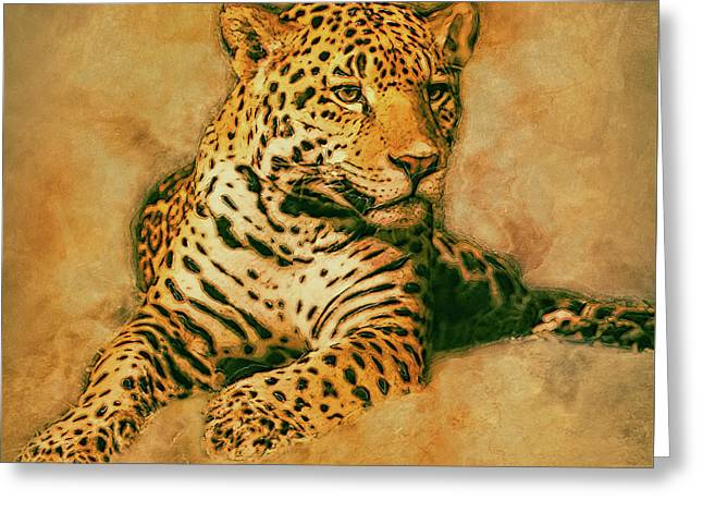 Leopard 3 Greeting Card by Jack Zulli