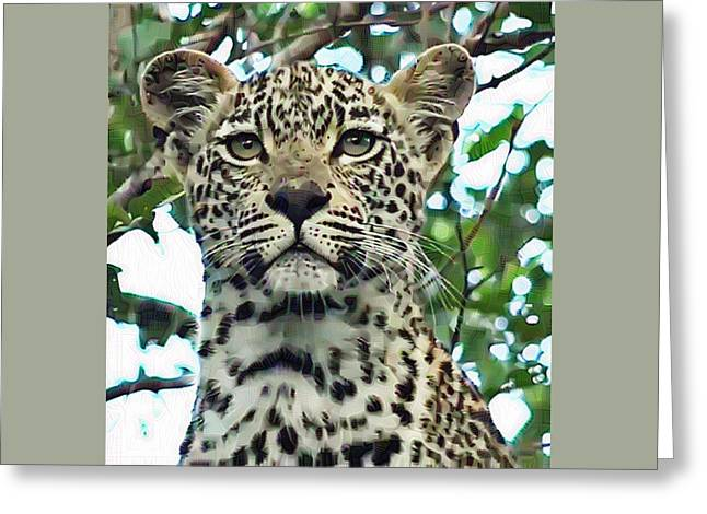 Leopard Face Greeting Card