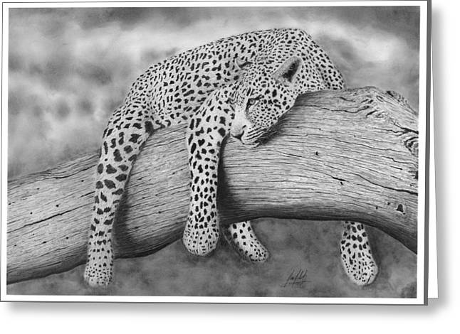 Leopard In Tree Drawing Greeting Card by James Schultz