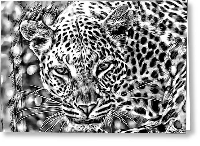 Greeting Card featuring the photograph Leopard by Lucia Sirna