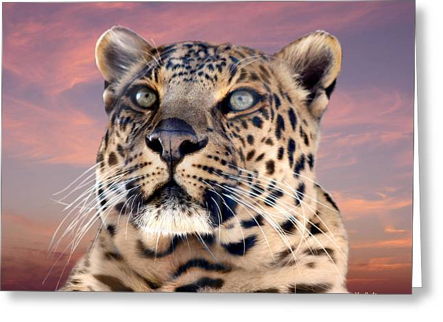 Leopard Portrait Number 3 Greeting Card