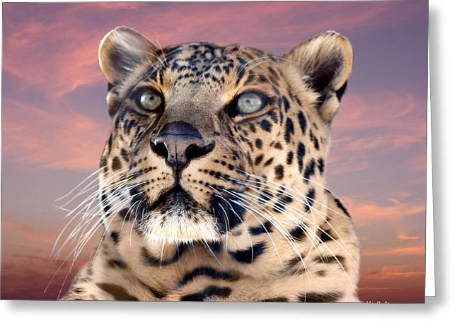 Leopard Portrait Number 3 Greeting Card