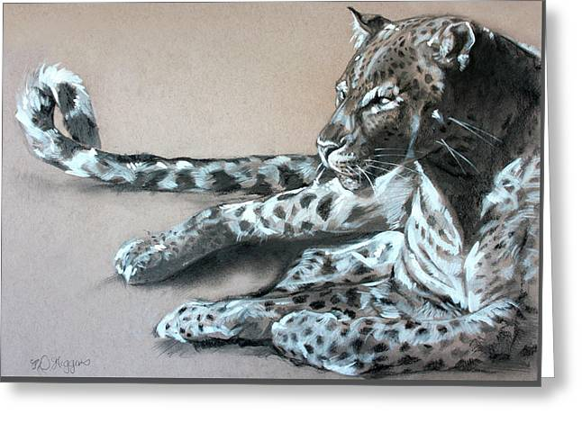 Leopard Sketch Greeting Card by Derrick Higgins