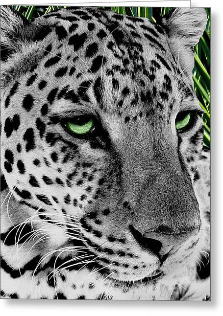 Leopard With Green Eyes Greeting Card