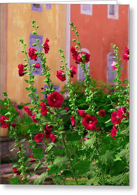 Les Fleurs Rouge Greeting Card