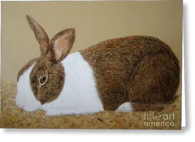 Les's Rabbit Greeting Card