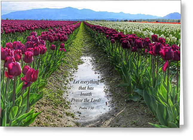 Let Everything That Has Breath,  Greeting Card by Lynn Hopwood
